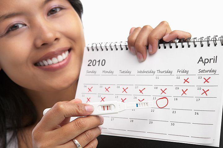овуляция календарь