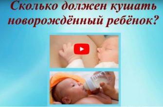 Сколько должен кушать новорожденный ребенок
