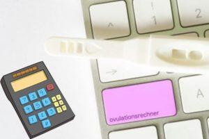 Калькулятор овуляции