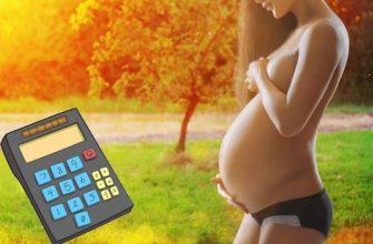 Калькулятор беременность онлайн