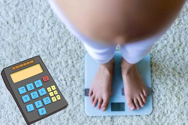 рассчитать прибавку в весе при беременности (калькулятор)